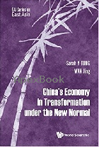 CHINA'S ECONOMY IN TRANSFORMATION UNDER THE NEW NORMAL 2018 - 9813208198 - 9789813208193